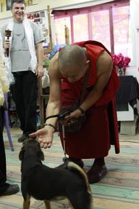 Rinpoche & Puka