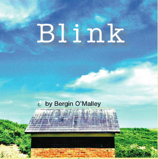 Blink album--DIGITAL MP3 Download