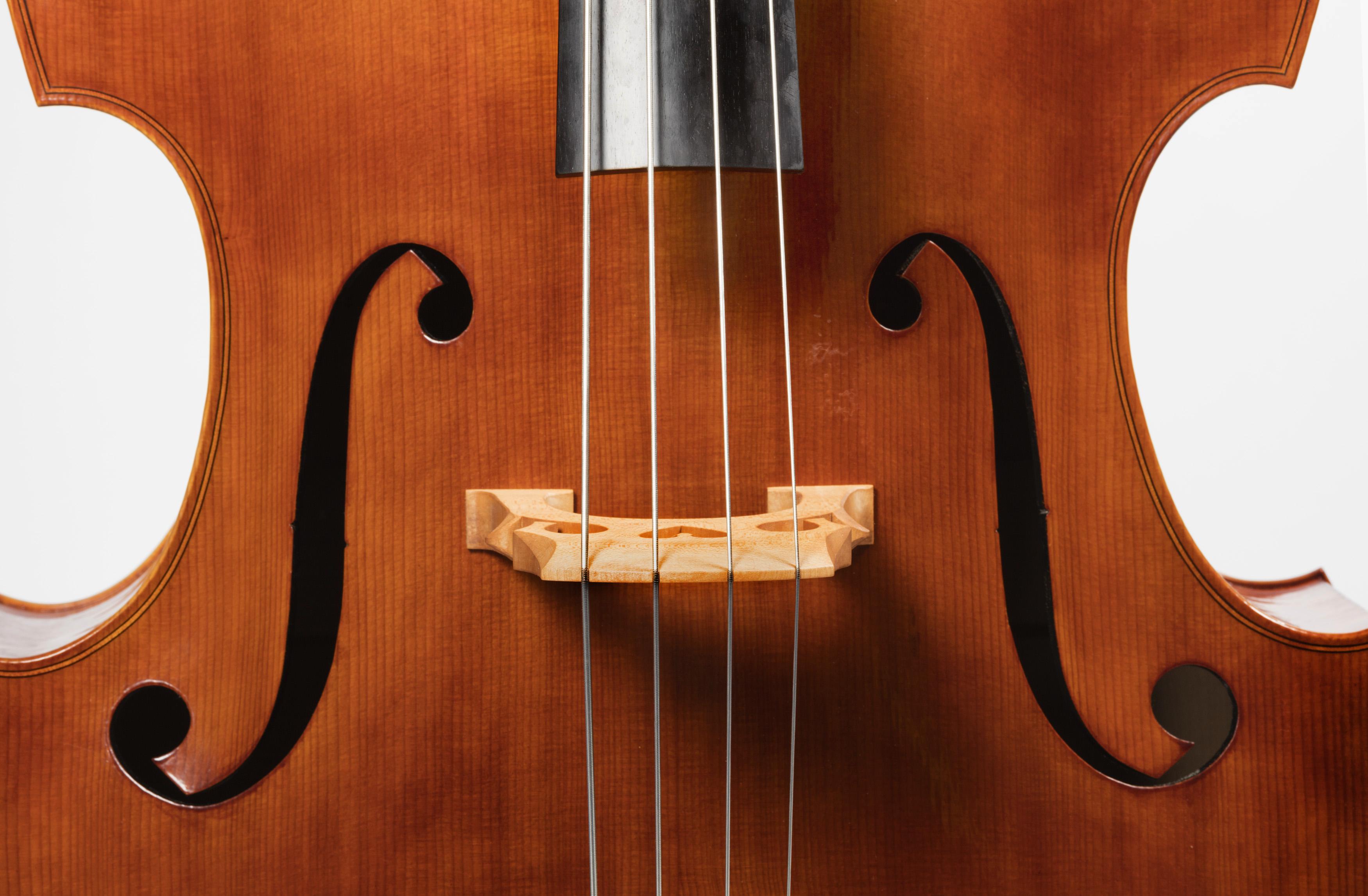 MATHER_0280_W Mackay Double Bass detail.