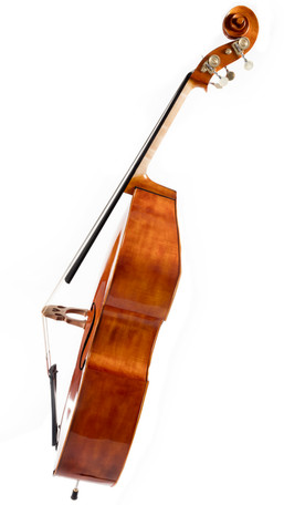 Side shot of Will Mackay double bass.