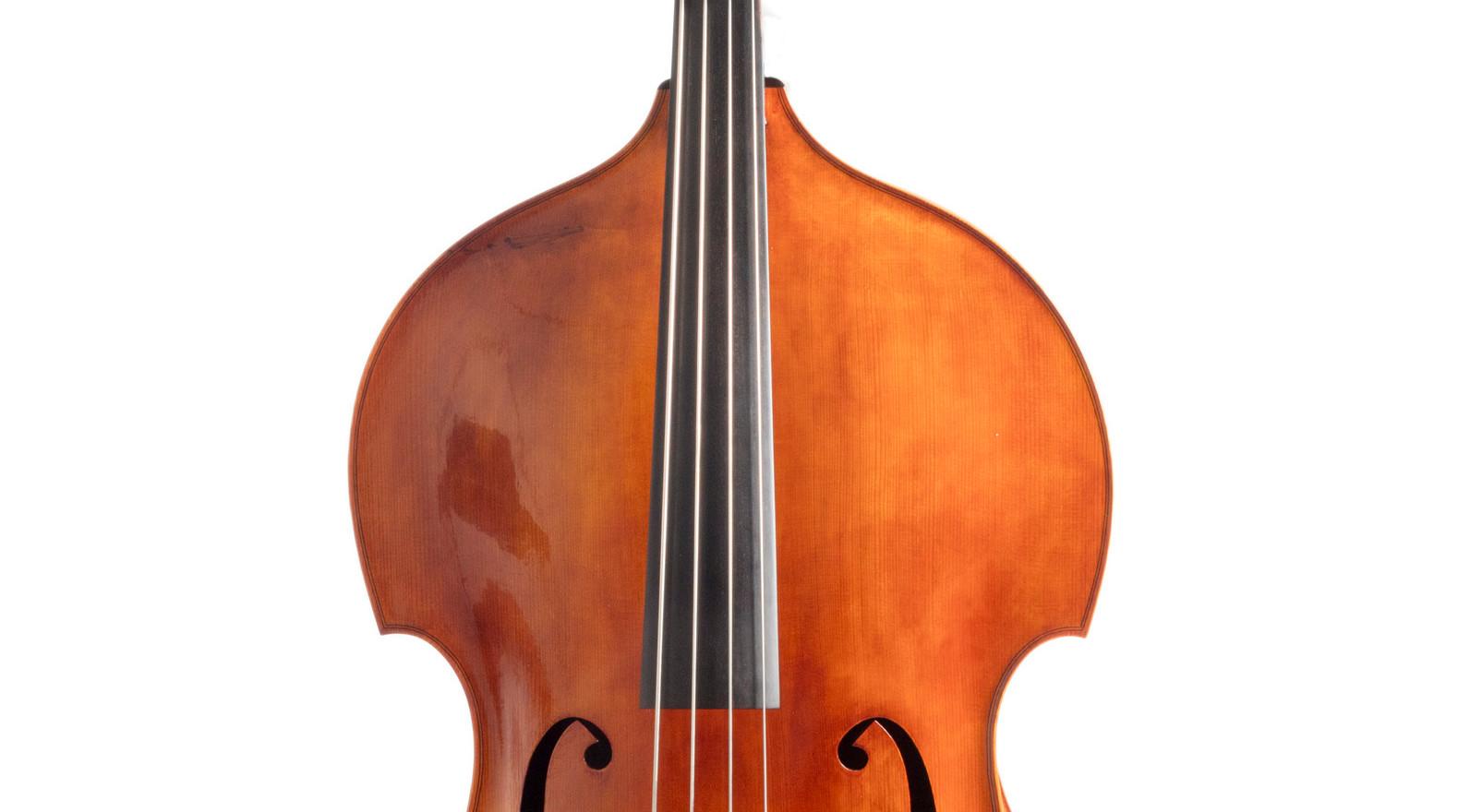 Front shot of viol outline bass.