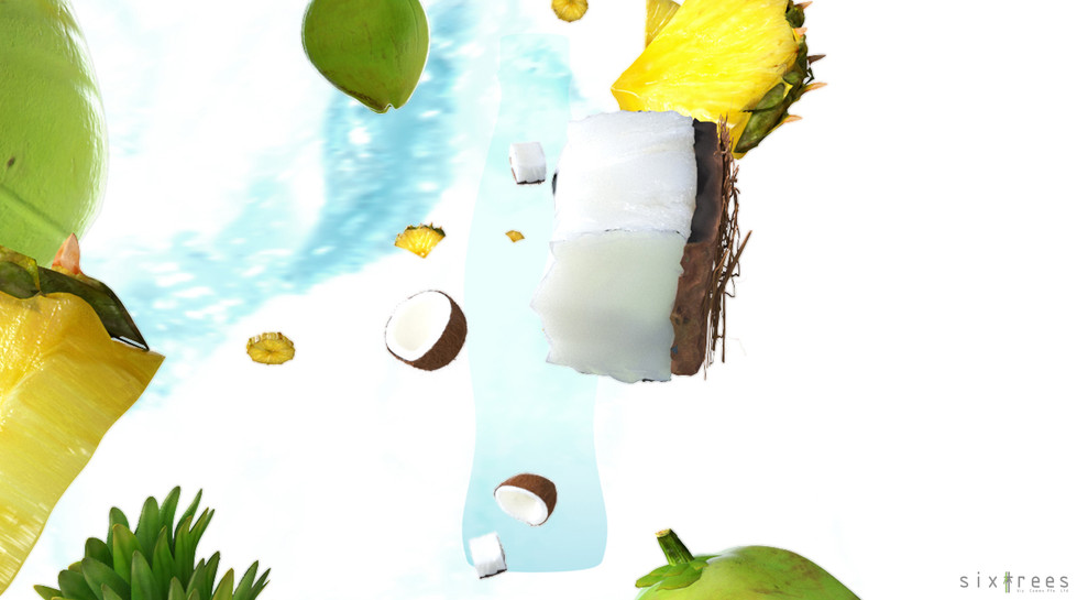 Coconut and Pineapple_ (00150) copy.jpg