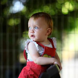 מחירון צילומי ילדים ומשפחה