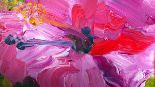 HIBISCUS SUNRISE - SOLD