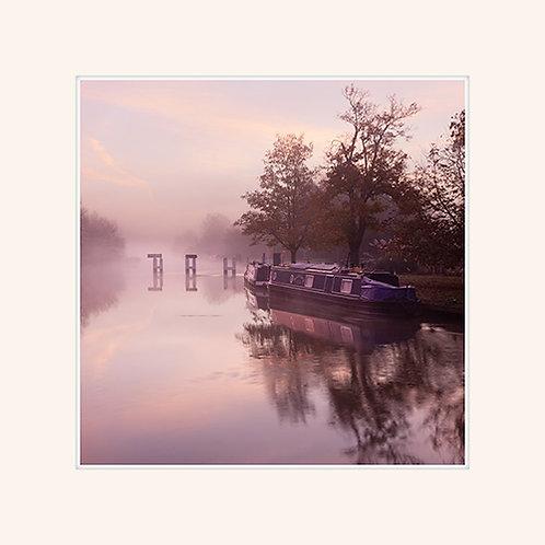Pink Weir 2
