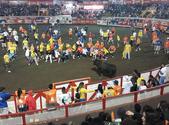 Corrida de toros a la tica en las Fiesta de Zapote, San José, Costa Rica, el 3 de enero de 2015. (Image by Rodtico21 via Wikipedia)