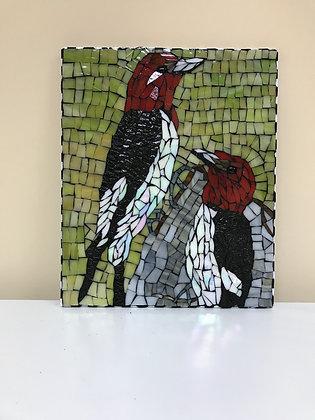 Woodpecker Portrait