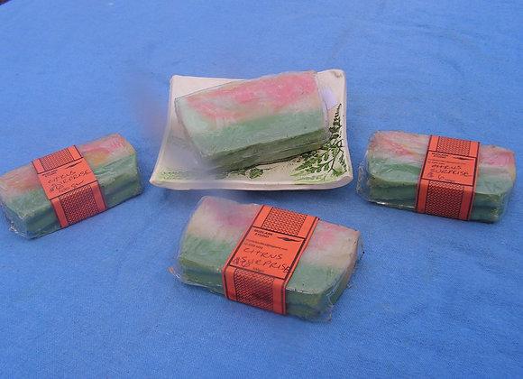 Citrus Surprise Soap