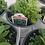Thumbnail: Petunia