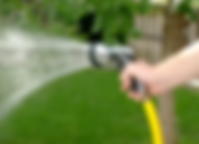 lawn, sod, sodding, how to water new lawn, sod, tips, advice, grass, water,