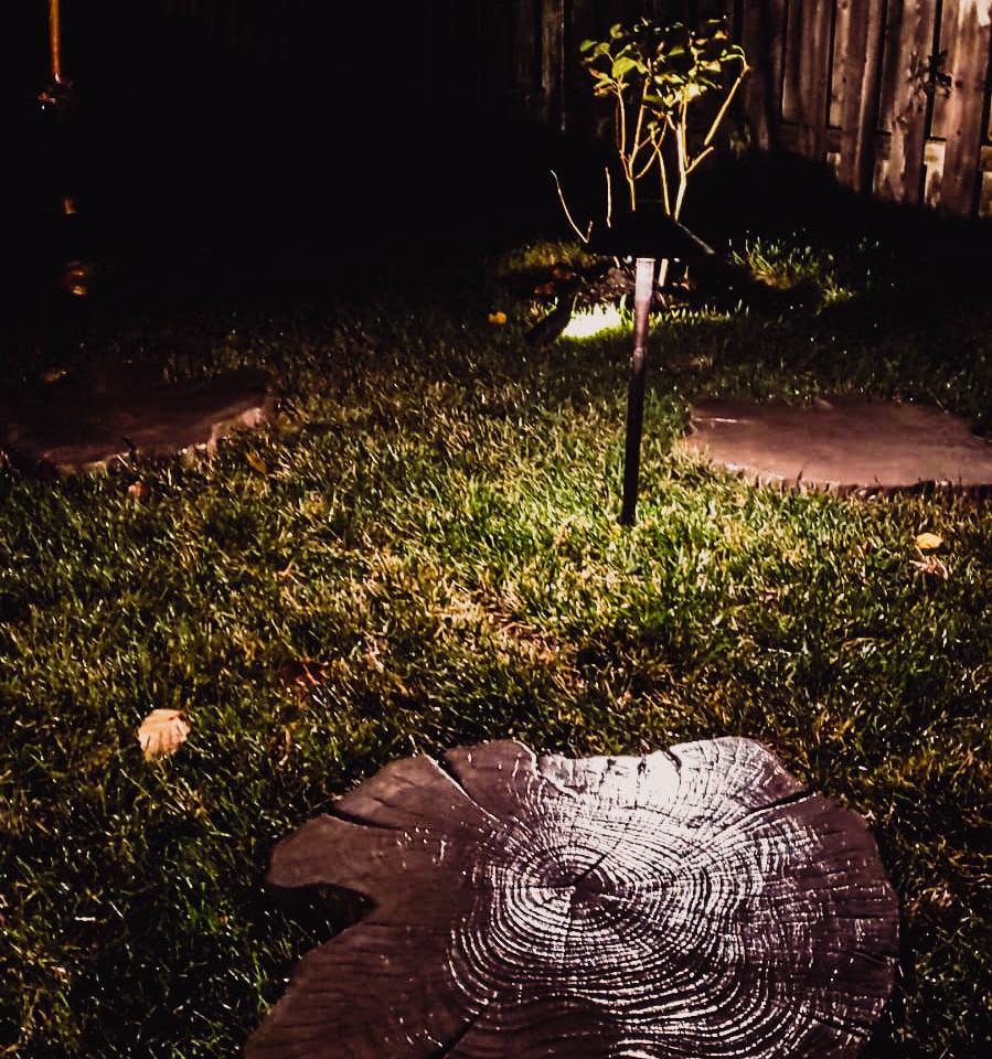 Backyard Path landscape light in the night