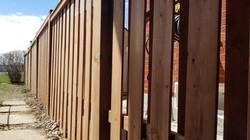 Fences in Maple