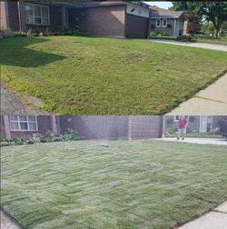 lawn photo 9