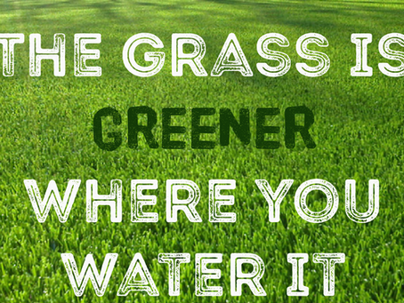 How to water a new lawn