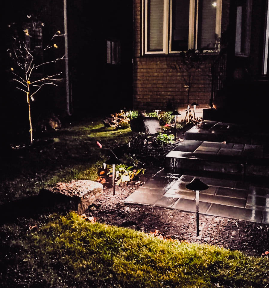 Backyard Path landscape light in the night 4-