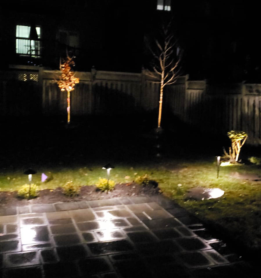 Backyard Path landscape light in the night 3