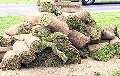 rolls of sod.jpg
