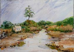 Impressions of Henderson Creek