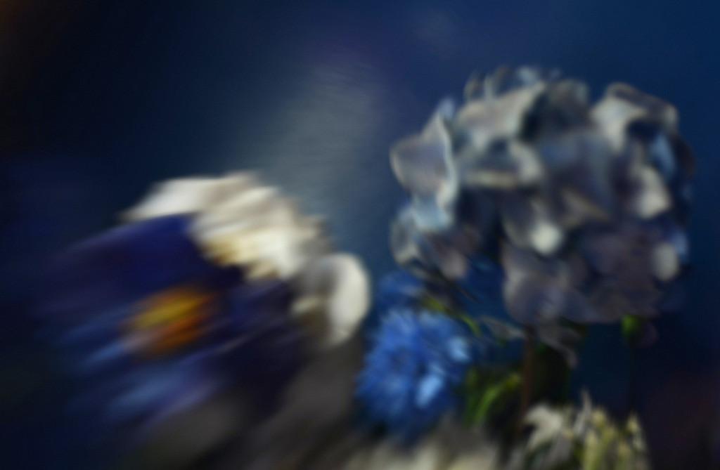 Kirsten Reid ABUNDANCE IN BLUE.jpg