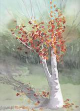 Margaret Norwood_Autumn in Corbans..jpg