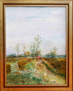 Rural Scene