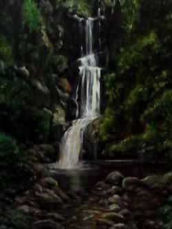 ART_Anne Johnston_Waitakere Bush Stream_$225