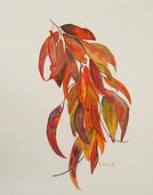 Janet Fuge_Autumn Leaves.jpg