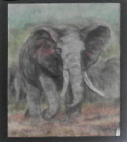 ART_Anne Johnston_What are you looking at Man_$195