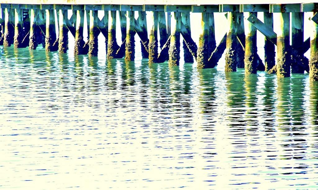 Natasha Smyser_Dock of the Bay.jpg