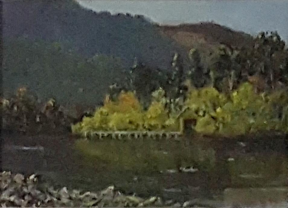 Ken Padgett_Spring Buller Gorge2