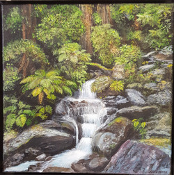 Kate Mora_Waitakere Stream