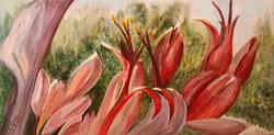 Hetty Boere Nature Theme Award-Christine Arter-Flax.jpg