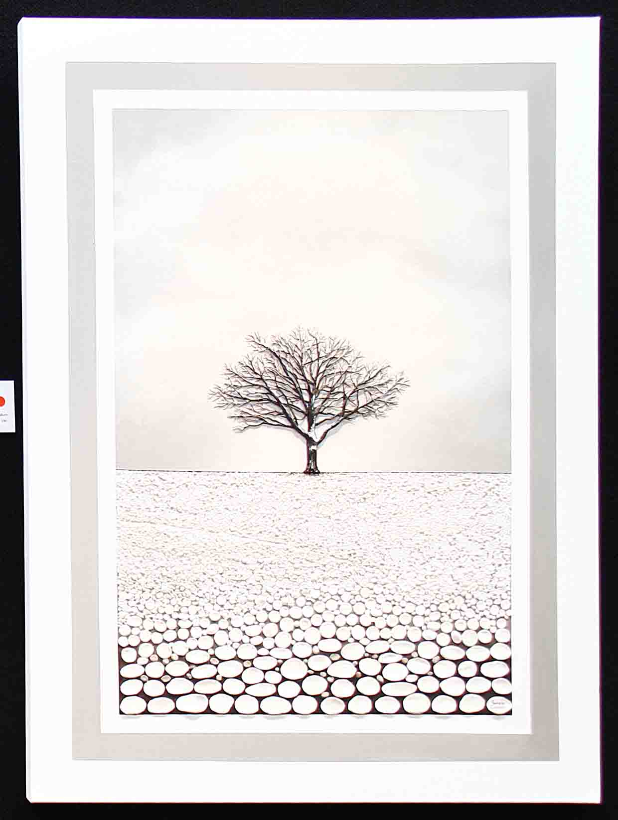 Pamela Cooper - Winter Oak.jpg
