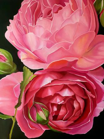 Two pink peonies.jpg