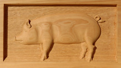 Rod Mackay_Domestic pig