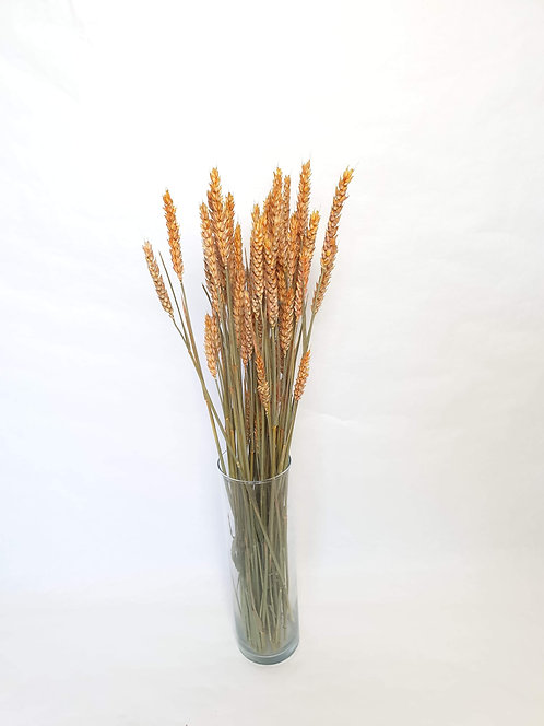 Orange korn i bundt