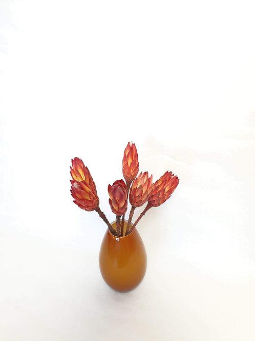Tørret Protea pr. stk