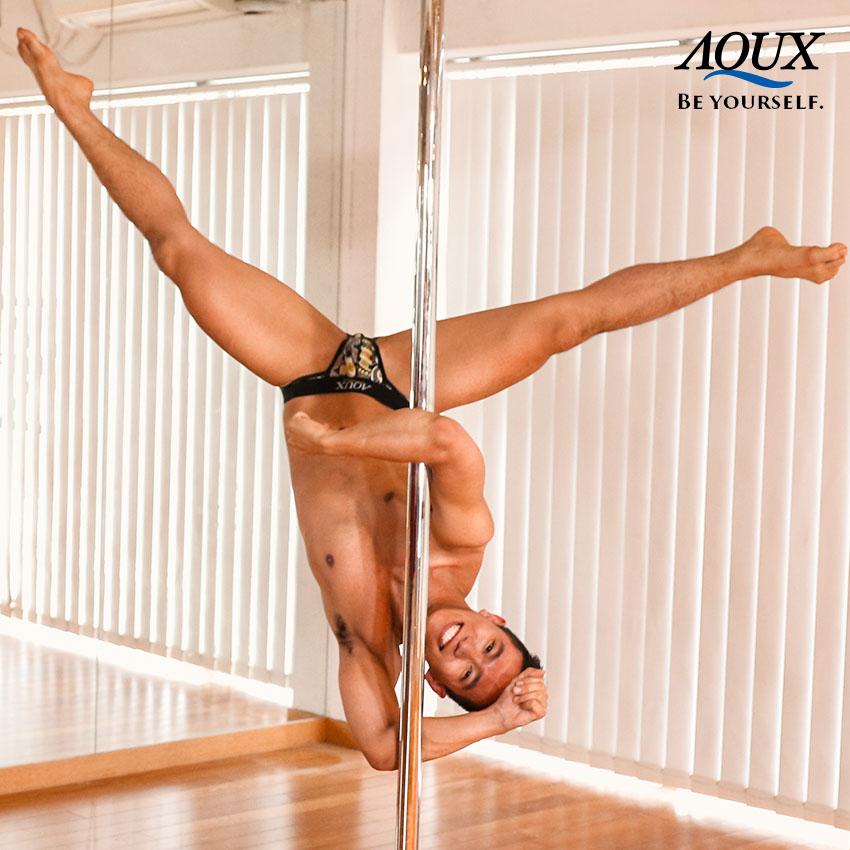 AQUX model: Maylaw