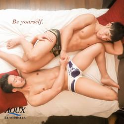 AQUX model: DAN & KUMA