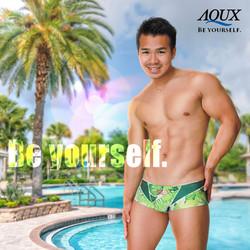 AQUX model: RICO