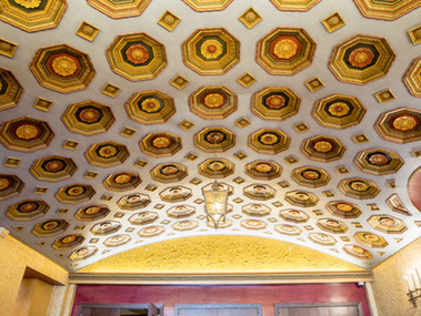 Medallion Ceiling