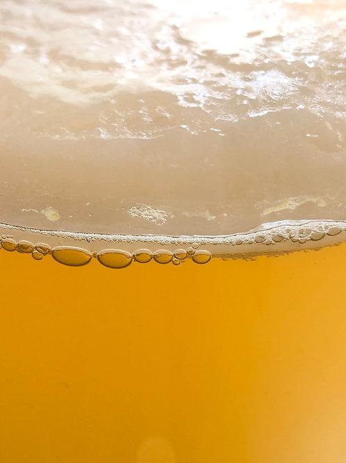 Kit de Jun Kombucha + Scoby (té verde y miel cruda)