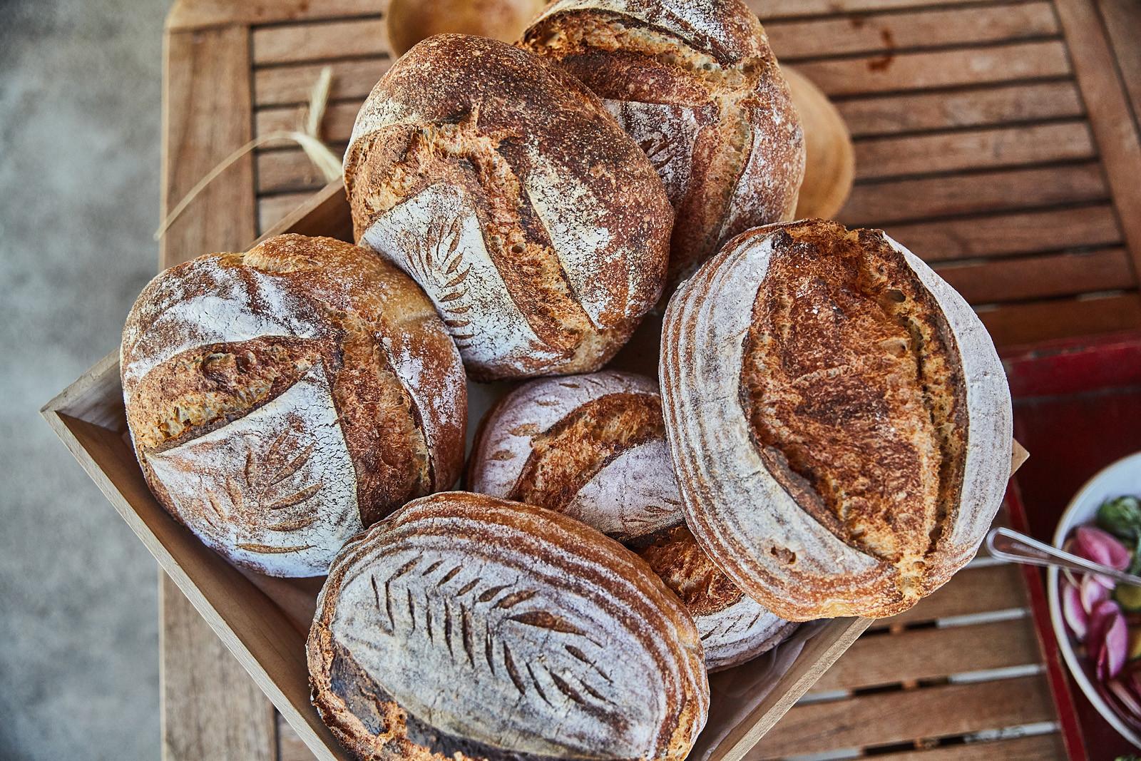 BREAD_FOOD INTERRUPTED_GRAIN_PANERA_PHOT