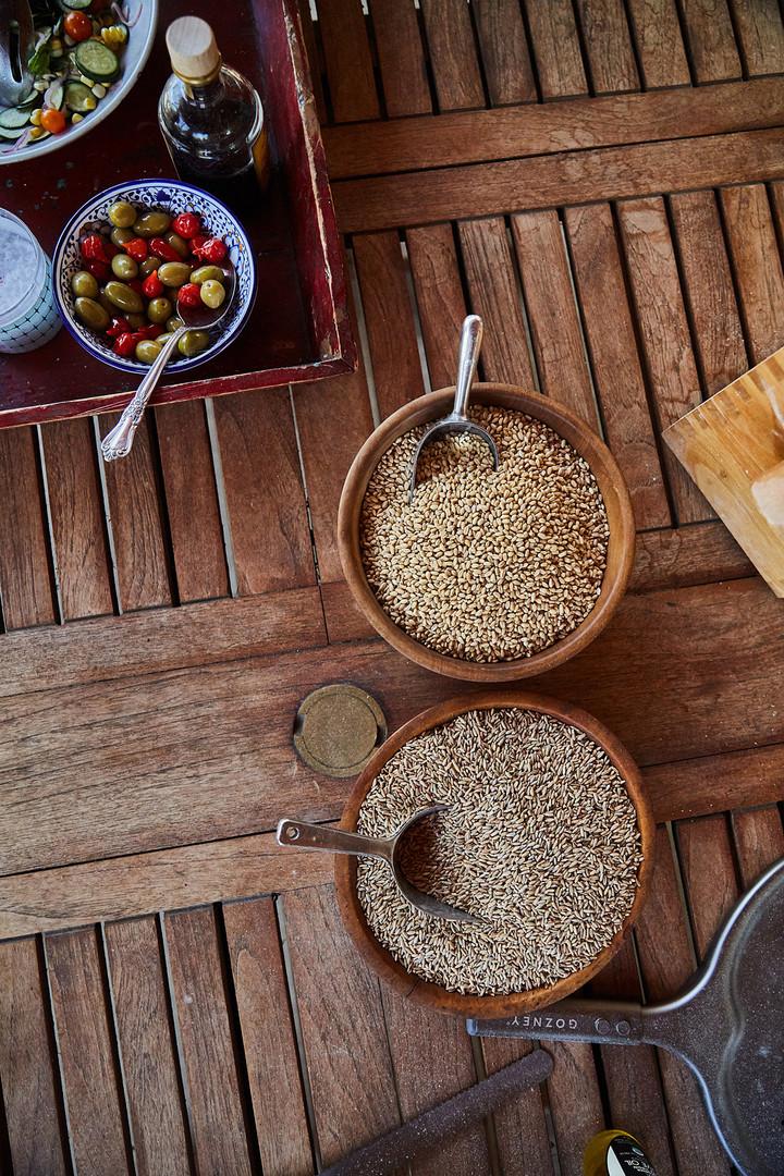 GRAIN_FOOD INTERRUPTED_GRAIN_PANERA_PHOT