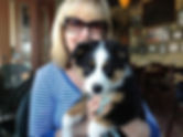 Border collie/aussie mix, Bleu dining at McMenamin's Bagdad Theatre Pub in Portland, OR