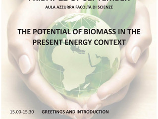 "Ancona, 22 settembre 2017: Seminario ""The potential of biomass in the present energy context"""