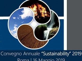 """Intervento di Vincenzo Naso al Convegno """"Sustainability 2019"""""""
