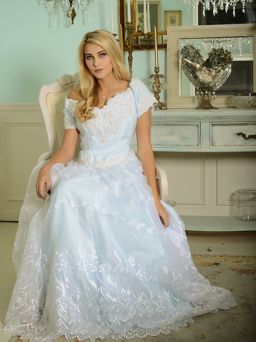 Pale Blue Vintage Fairy Tale Princess Costume Ball Gown L