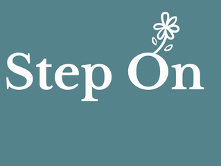 Step On - job seekers programme
