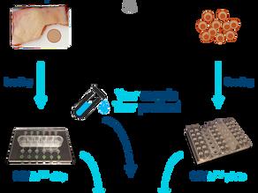 REVIVO BioSystems: transforming the in vitro research market